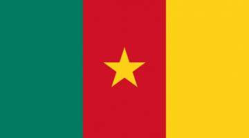 1xbet Kamerun